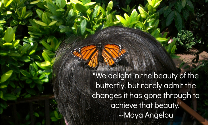 butterfly maya angelou