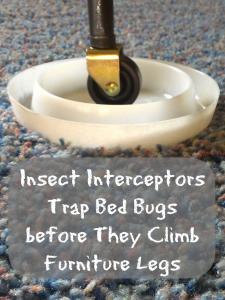 Insect Interceptors